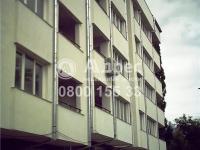 Офис, град София, Дървеница